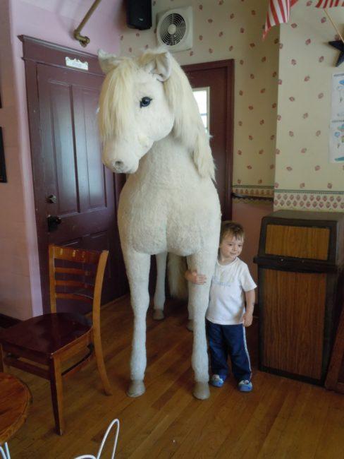 The Plush Horse