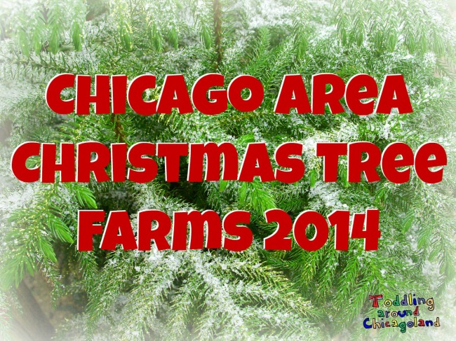 Chicago Area Christmas Tree Farms 2014 - Toddling Around Chicagoland
