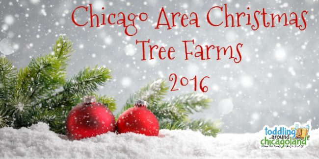 Chicago Area Christmas Tree Farms - 2016 - Toddling Around Chicagoland